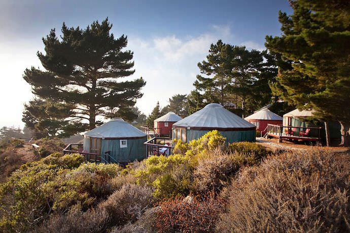 treebones-yurt