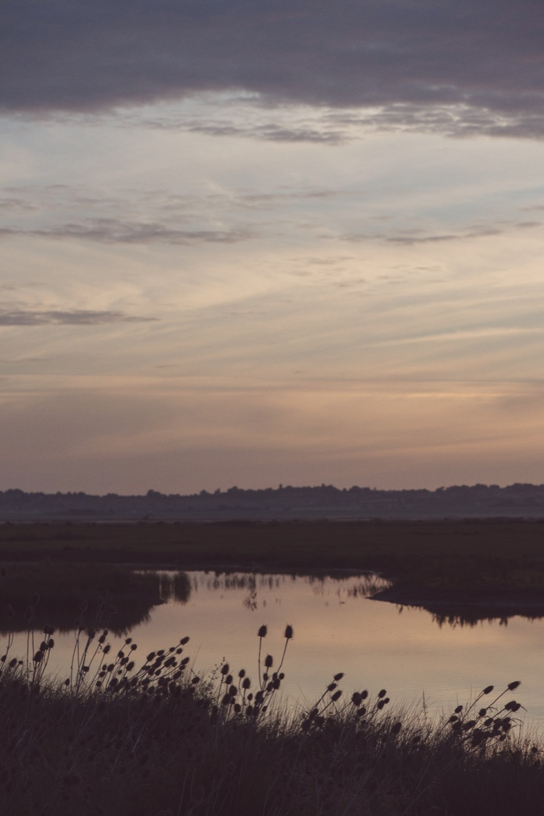 Elmley-Nature-Reserve-Sunrise-Monday-29th-June-2015-150