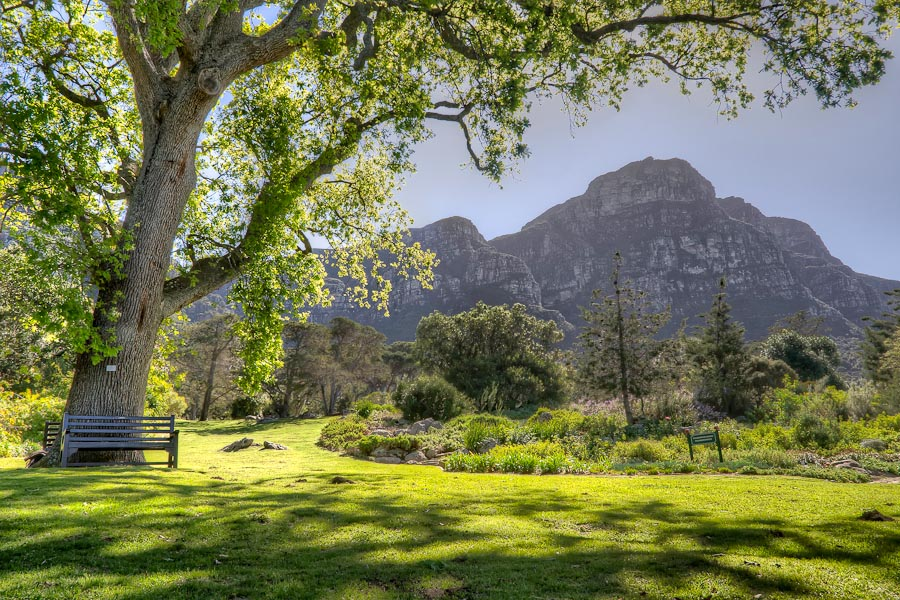 Kirstenboch-Cape-Town-MyTravelDreams