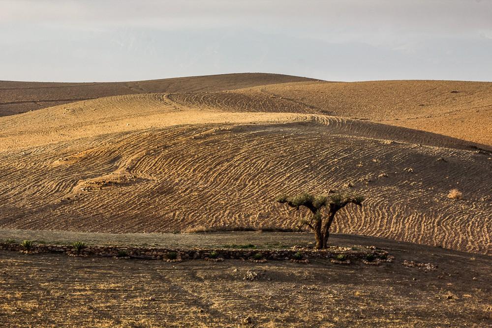 TERRE-DES-ETOILES-DESERT