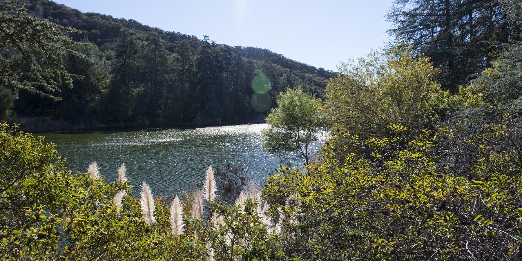 franklin-canyon-reservoir