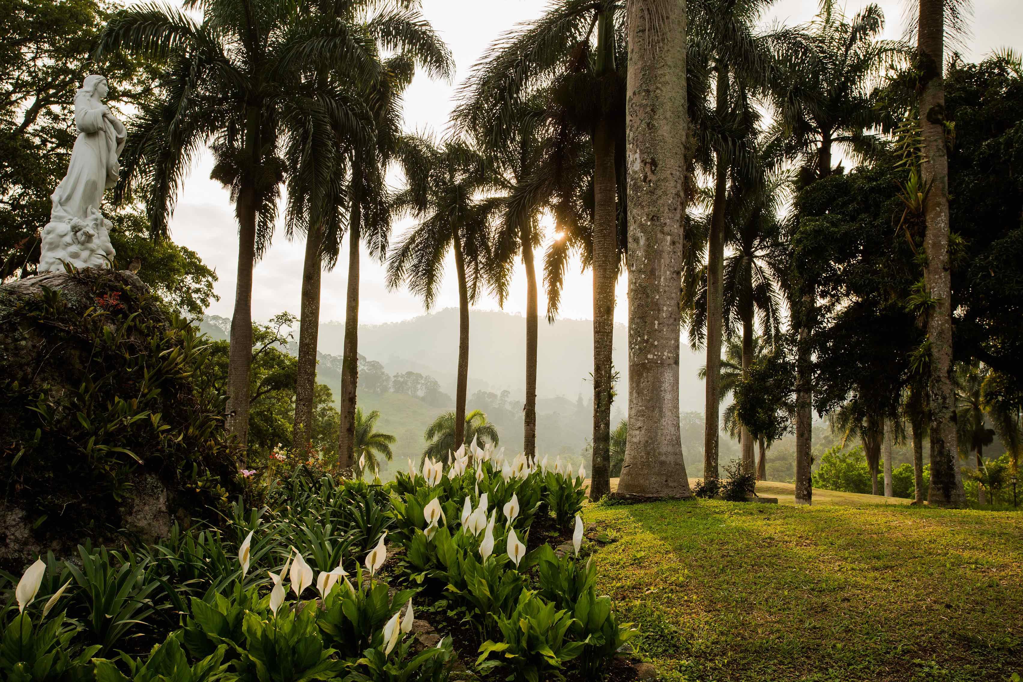 http-www.refugiohotelspa.com-Jungle