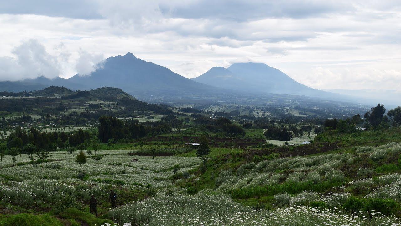 MY TRAVEL DREAMS X RWANDA musanze