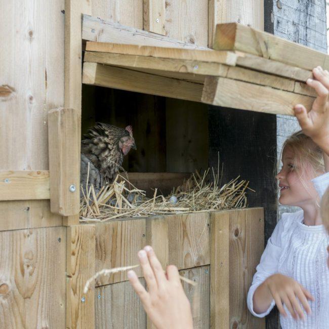 les-sources-de-caudalie-experience-famille-jardin-abeilles-650x650