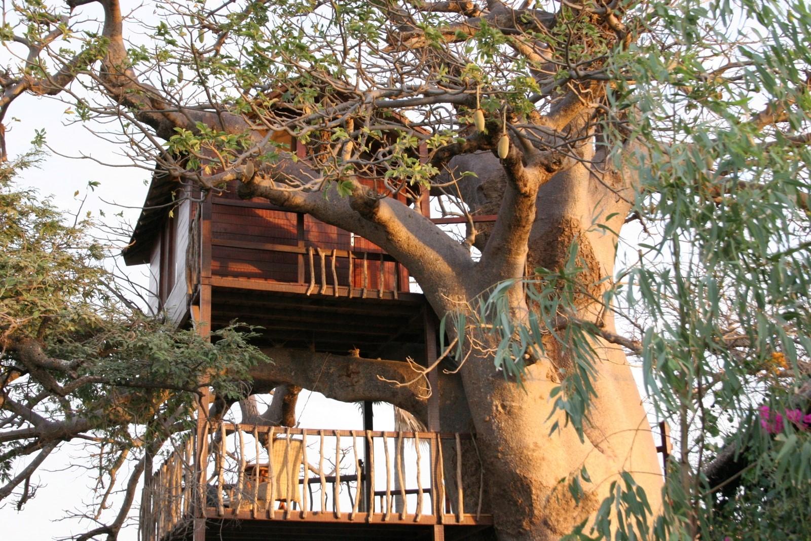Lodge_niassam_robinson_senegal 1 cabane perchee